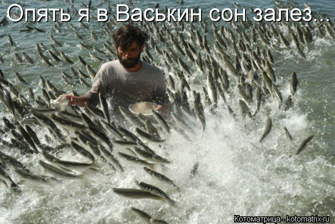 Фото прікол после рибалкі 10 фотография